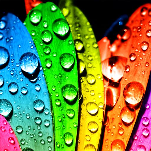 雨滴—壁纸离线版